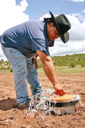 The Navajo Times Online Wheatfields Farmers Still