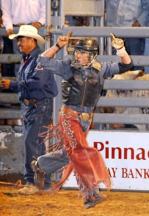 Wild Thing Bullriding Bulls Give Riders Tough Competition