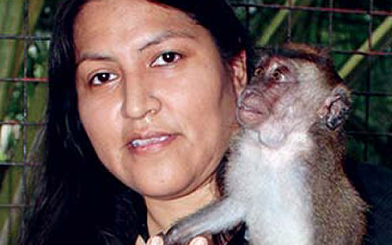 Primates draw Diné anthropologist to the Philippines