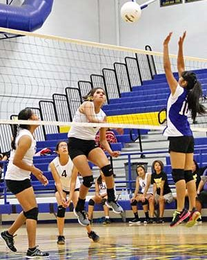 Whitehorse volleyball team relying on seniors