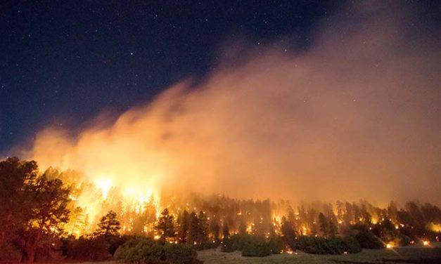News Briefs: Assayii Lake Fire a factor in top official's resignation