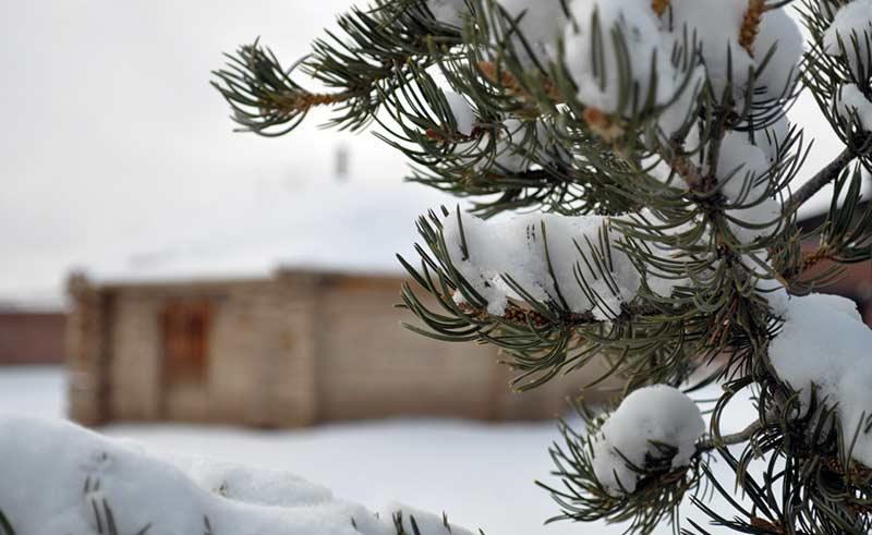 Snow is pretty; won't redeem lousy water year