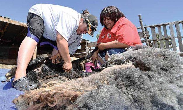 Shear enjoyment