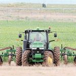 NAPI: Drought not a problem, but other concerns exist