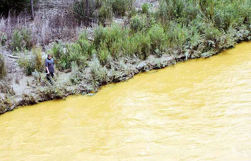 A man walks to the bank of the Animas River and San Juan River confluence on Saturday as contaminated wastewater flows by him in Farmington. (Times photo – Donovan Quintero)