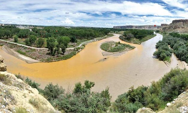 Another mine spills into Animas