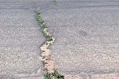 Capital Briefs: Mariano Lake hears updates on road improvements