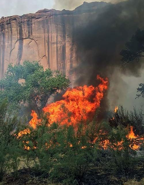 Fires popping up in spite of restrictions