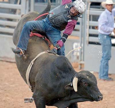 Successful season captures state title for Rehoboth bull rider
