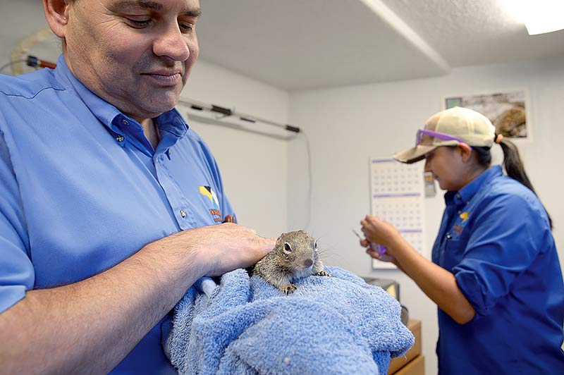 Navajo Nation Zoo works to improve, add-on