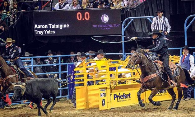 Tsinigine wins average at WNFR team roping