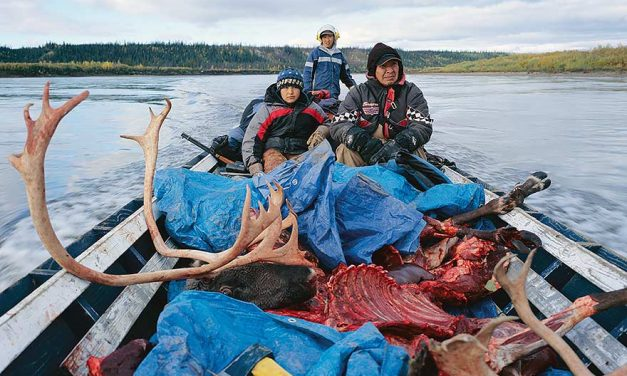 Diné join Gwich'in in fight against oil & gas in Arctic