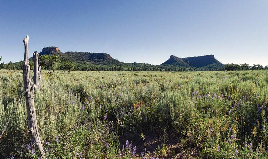 Council 'disrespected' in Bears Ears proclamation
