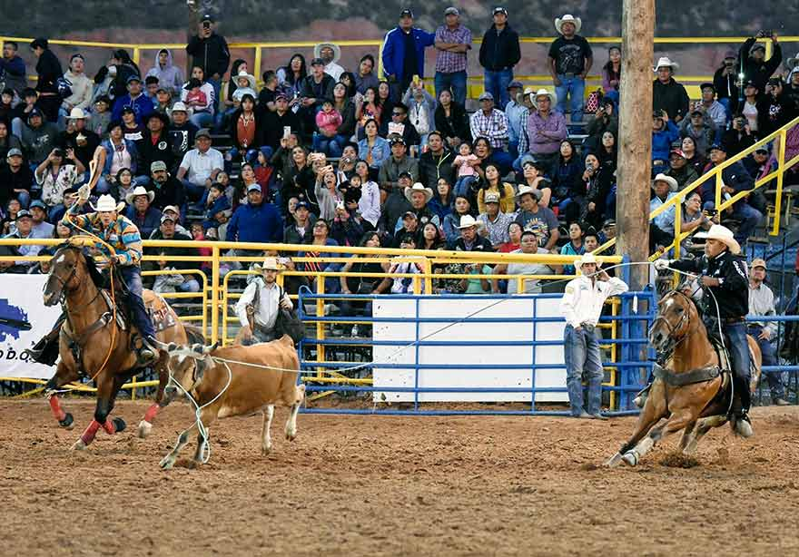 Travelin' man:  Erich Rogers chasing team-roping world title