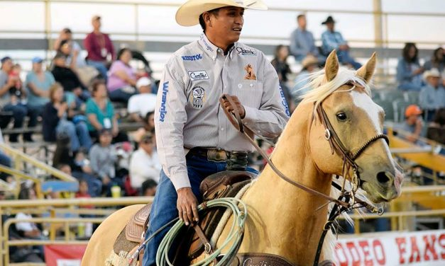 Free – except for parking – events at 4th expo, rodeo