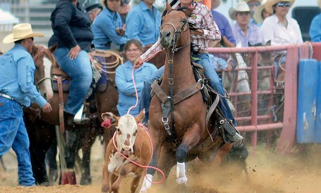 Back to the drawing board: Tohatchi barrel racer fine-tunes routine to score win