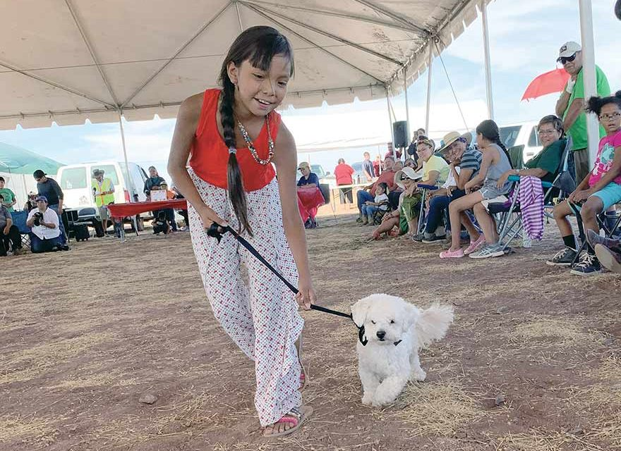 Dog show lets people show off their pets