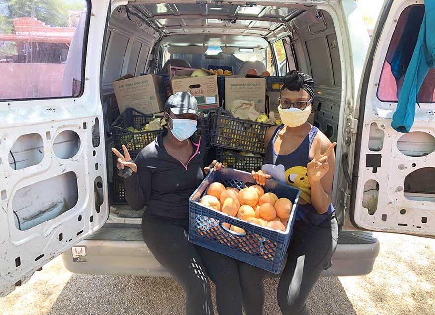 Nonprofits work to get surplus produce to quarantining Diné