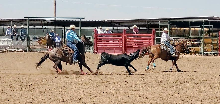 Trust in each other: Young Diné ropers face a stacked field