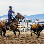 'A lot of heart': Team roper aims for state, national titles