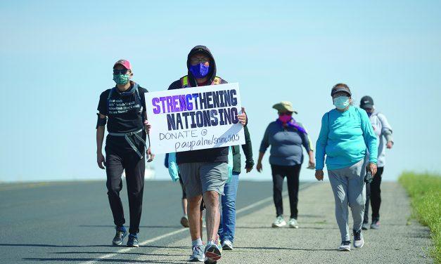 Walk raises awareness of DV shelters' needs