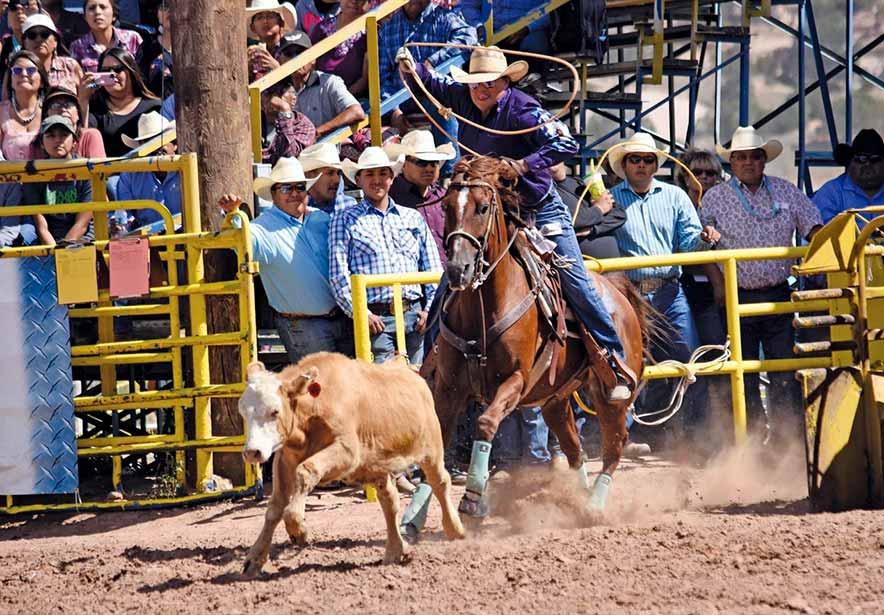 A look back: Navajo Nation Fair brings back fond memories