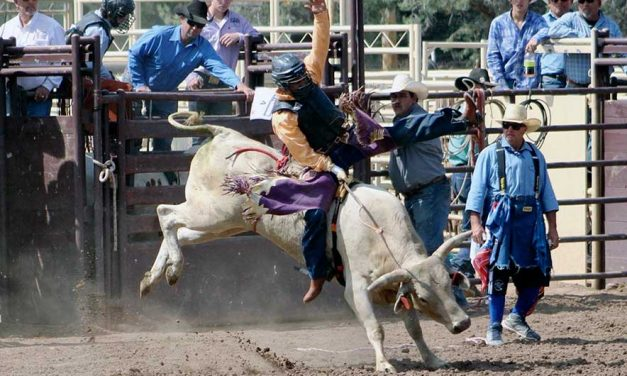 'Making every run count':  Moreno captures bull-riding title at high school season opener