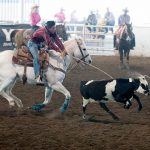 Left-handed roper emerges as competitor in chute-dogging