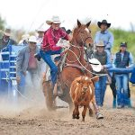 'We just know how to win':  Gallup cowboy nets pair of average titles