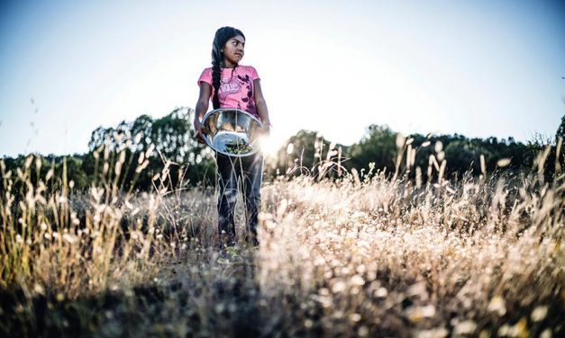 Native foodways doc to air on Netflix