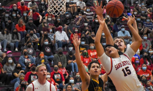 Page plays for state title, Coconino loses in semifinal