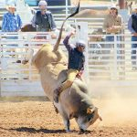 College rodeo finals are back; locals have big dreams