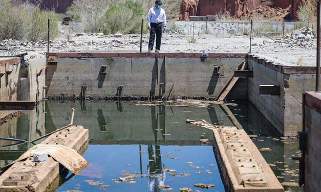 Costs of cleaning up: Many issues plague former Navajo Forest Products Industry site