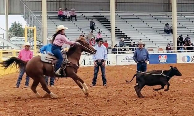 Diné youth earn trip to National Finals