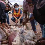 Miss Navajo adds butchering to her resume