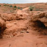 Sweetwater opens up after a monsoon hits Northern Navajo