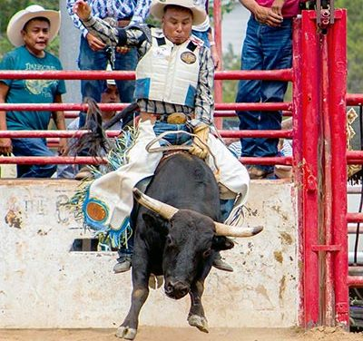 'You just have to believe in yourself': Shiprock bull rider takes another shot at world title