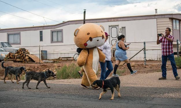 Bearsun's effect: Why are Diné obsessed with man in bear suit?