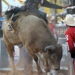 Riding with the best:  PBR picks 4 Diné to compete in Saturday event